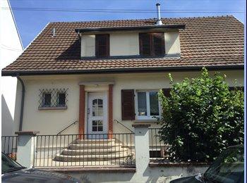 Appartager FR - chambre à louer - Mulhouse, Mulhouse - 350 € /Mois