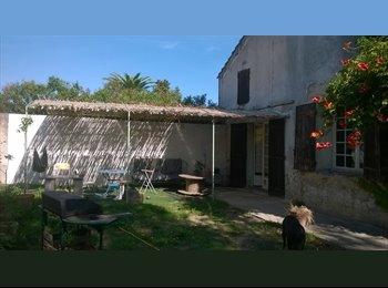 Appartager FR - colocation proche d'avignon (15min) dans un mas - Avignon, Avignon - 400 € /Mois