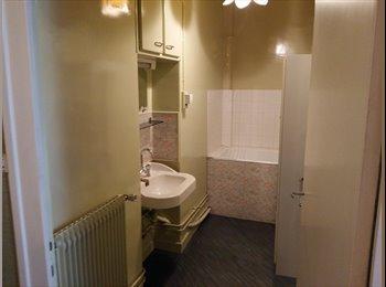 Appartager FR - 167 euros pour un 60 m2 semi meublé - Saint-Etienne, Saint-Etienne - 167 € /Mois