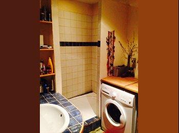 colocation dans bel appartement dans le vieux lyon