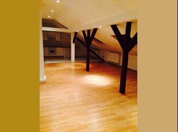 Appartager FR - Duplex 110 m2 Bischheim  - Bischheim, Strasbourg - 450 € /Mois