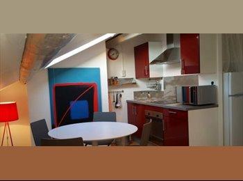 Appartager FR - Très bel appartement meublé  - Centre ville, Charles III, Nancy - 440 € /Mois