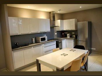 Appartager FR - chambre à louer dans maison idividuelle - Décines-Charpieu, Lyon - 300 € /Mois
