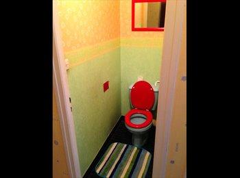 Appartager FR - chambre à louer - Saint-Sernin, Toulouse - 500 € /Mois