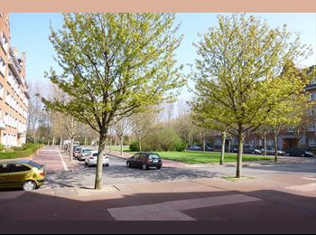 Appartager FR - Appartement au Rez de Chaussée dans quartier très calme en Centre Ville - Calais, Calais - 985 € /Mois