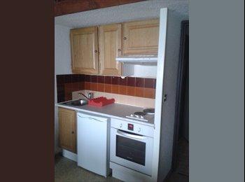 Appartager FR - studio mezzanine - Font-Romeu-Odeillo-Via, Font-Romeu-Odeillo-Via - 200 € /Mois