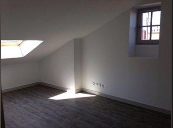 Appartager FR - Superbe appartement proche Part-Dieu et écoles - 3ème Arrondissement, Lyon - 445 € /Mois
