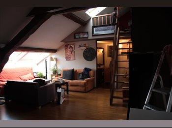 Appartager FR - Collocation Rue Isabey NANCY - Mon Désert, Jeanne d'Arc, Nancy - 350 € /Mois