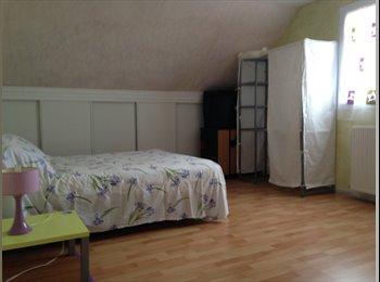 Appartager FR - Chambre chez l'habitant - Pau, Pau - 350 € /Mois