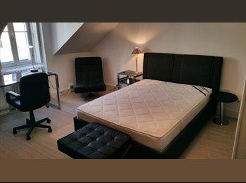 Appartager FR - Chambre de charme a partager dans grande collocation entièrement rénovée - Angers, Angers - 505 € /Mois