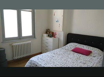 Appartager FR - Colocation meublée  à partir du 1er janvier pour 3 mois - Centre, Rennes - 325 € /Mois