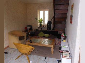 Appartager FR - Collocation maison de 90m2 avec jardin  - Angoulême, Angoulême - 224 € /Mois
