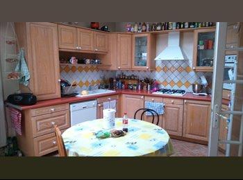 Appartager FR - Chambre dans grande colocation - Nogent-sur-Marne, Paris - Ile De France - 520 € /Mois