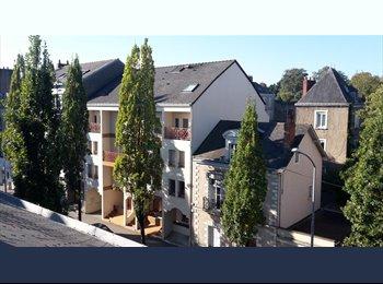 URGENT -Place dispo dans coloc proche  350 € ch incl