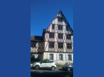 Appartager FR - Grande Chambre dans la Doutre - Angers, Angers - 375 € /Mois