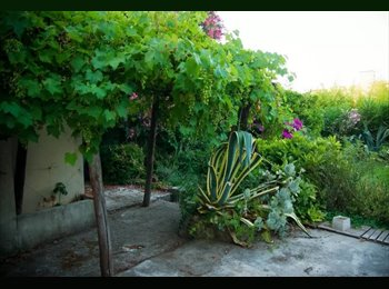 Appartager FR - Room in  quiet & cosy house in Antibes - Antibes, Cannes - 580 € /Mois