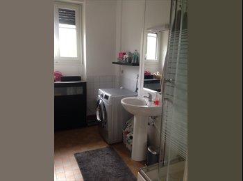 Appartager FR - Propose colocation  - 8ème Arrondissement, Lyon - 375 € /Mois