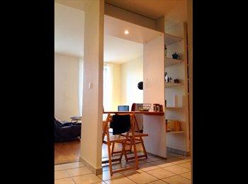 Appartager FR - je propose une collocation - 7ème Arrondissement, Lyon - 480 € /Mois