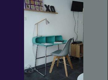 Appartager FR - Studio T1 de charme, Vieux Lyon - 5ème Arrondissement, Lyon - 440 € /Mois