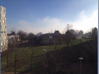 Appartager FR - COLOCATION DANS GRAND T3 PROCHE DE TOUTES COMMODITES - Rillieux-la-Pape, Lyon - 390 € /Mois