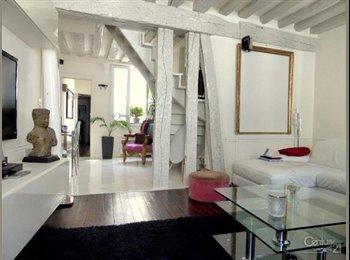 Appartager FR - Duplex 3 pièces - 74,59 m2 - Paris 1er - 1er Arrondissement, Paris - Ile De France - 350 € /Mois