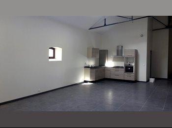 Appartager FR - Auxerre, appartement type loft de 150m², 4 chambres - Auxerre, Auxerre - 212 € /Mois