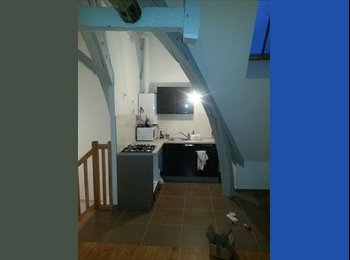 Appartager FR - Colocation proche Cathédrale - Troyes, Troyes - 330 € /Mois