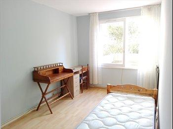 Colocation dans un appartement RDC