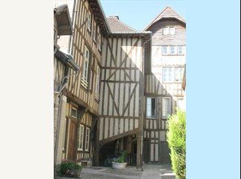 Appartager FR - Cherche  colocataire triplex 92 m2 (plein centre/gare) 300€ - Troyes, Troyes - 300 € /Mois