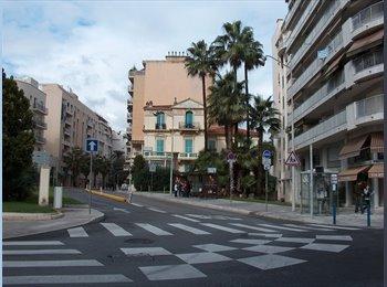 Studio meuble louer au coeur de Nice pour les etudiants