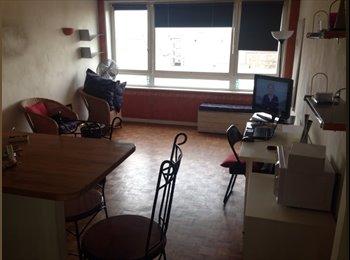 Partage studio meublée 30m2 à Montreuil (93100) limite...