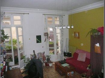 Chambre de 25m2  ds coloc plein centre de Montpellier