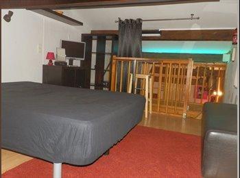 Appartager FR - Colocation Mezzanine 12m² equipée - Castelnau-le-Lez, Montpellier - 260 € /Mois