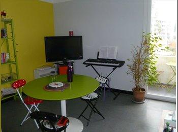 Appartager FR - colocation Toulouse Saint Agne - Empalot - Saint Agne - Sauzelong, Toulouse - 350 € /Mois