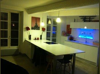 Appartager FR - Jolie appartement en centre ville ! - Nîmes, Nîmes - 380 € /Mois