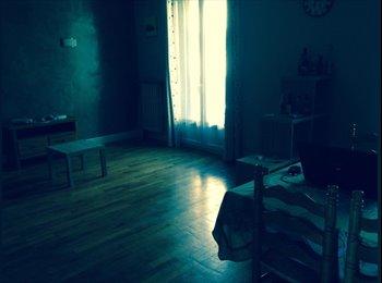 Appartager FR - Colocation - 1 chambre- Appartement 80m² - Romans-sur-Isère, Valence - 300 € /Mois