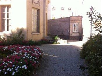 Appartager FR - Dans petite maison Grand studio a partager - Saint-Maur-des-Fossés, Paris - Ile De France - 250 € /Mois