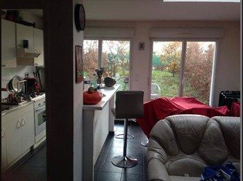 Appartager FR - Colocation super sympa et peu chère à la Madeleine  - La Madeleine, Lille - 370 € /Mois
