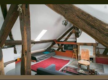 Appartager FR - Location appartement 65m2 idéal pour colocation temporaire! - 5ème Arrondissement, Paris - Ile De France - 900 € /Mois