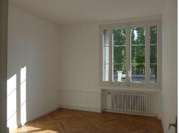 Appartager FR - Colocation au calme dans Lyon 7ème - 7ème Arrondissement, Lyon - 550 € /Mois