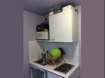 Appartager FR - Appartement en sous location  - 7ème Arrondissement, Lyon - 550 € /Mois