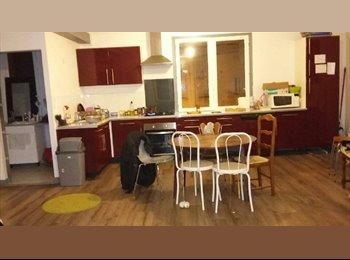 Appartager FR - Appartement 90 m2 - Thabor - Saint Hélier, Rennes - 185 € /Mois