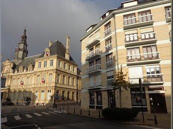Appartager FR - recherche 3 eme coloc pour appart hyper centre  - Reims, Reims - 380 € /Mois
