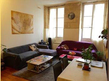 Appartager FR - Chambre disponible dans un bel appartement en coloc - Hôtel de ville - Quinconces, Bordeaux - 480 € /Mois