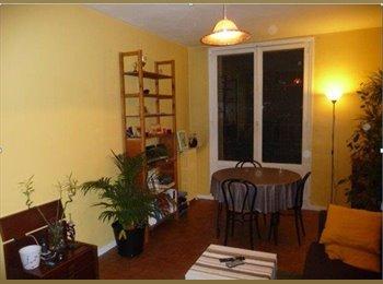 Appartager FR - Appartement 3 pieces 55 m² - 15ème Arrondissement, Paris - Ile De France - 1440 € /Mois
