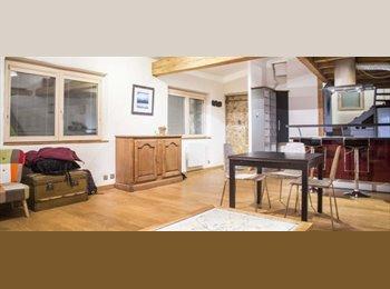 Appartager FR - Elégant Studio Loft à louer dans le populaire Quartier de la Croix-Rousse - 1er Arrondissement, Lyon - 950 € /Mois