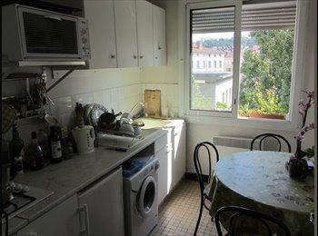 1 chambre meublée à louer à Lyon Valmy - 1 room available...
