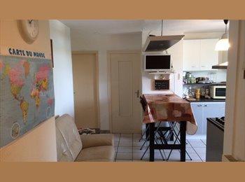 Chambres à 360 € TCC et y c Wifi Abonn et Conso.