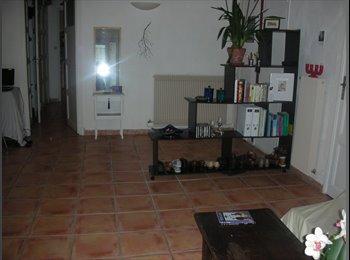 chambre en colocation entre gare Saint-Charles et Canebière