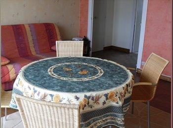 Appartager FR - Chambres meublées à louer dans appartement équipé - Angers, Angers - 320 € /Mois